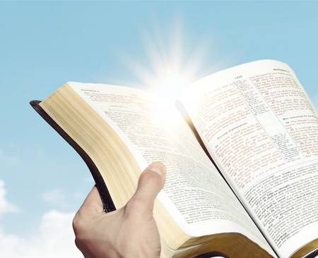 Female reading the Holy Bible