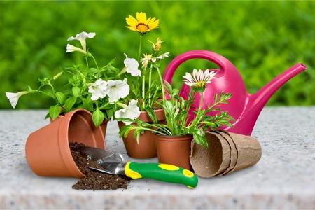 Gardening Tools Stockfoto