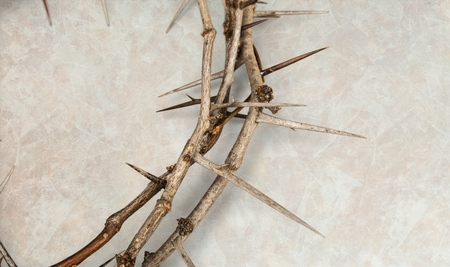 Crown of thorns on wood background