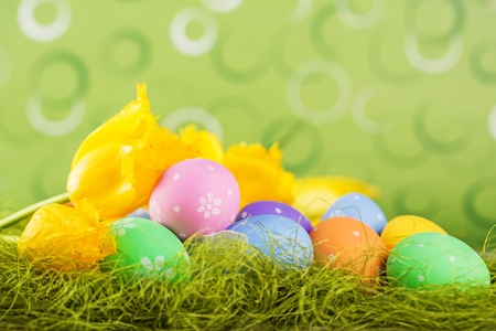 Easter eggs on meadow in springtime