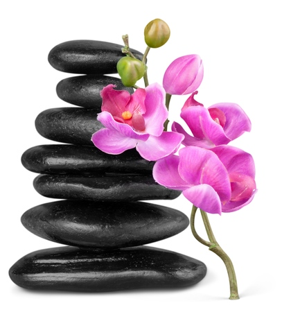 Balancing Pebbles with Flower