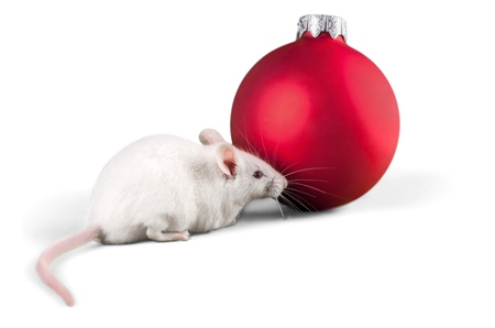Decorative christmas ball and mouse isolated on white Stockfoto