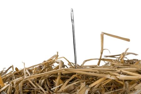 Close-up of a Needle in a Hay 版權商用圖片