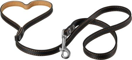 Dog Collar with Leash Isolated 版權商用圖片