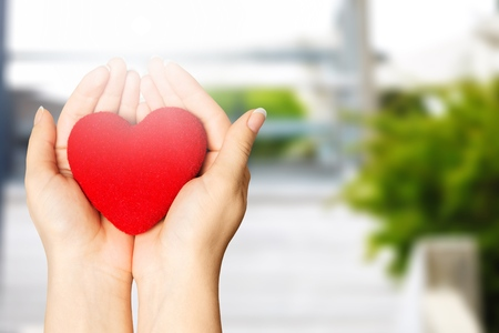 Hands of young woman holding red heart