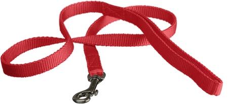 Nylon Dog Leash Isolated
