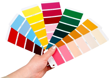 Hand Holding Color Palettes - Isolated Stock Photo