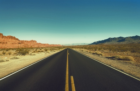 Asphalt road through the green field and