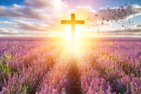 Concept du Vendredi Saint: la croix sur le pré