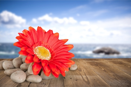 Flower and rocks - spa theme Stockfoto