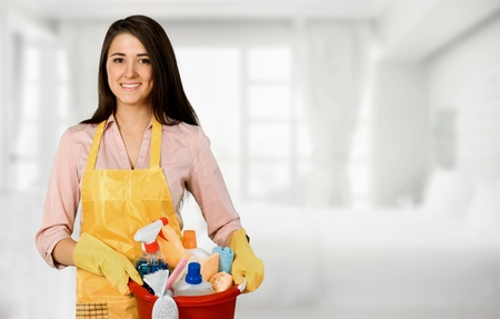 Beautiful Young Woman Housewife with Cleaning products Stock Photo