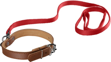 Dog Collar with Leash Isolated on white background