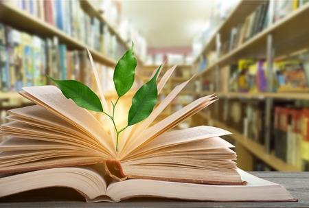 Concetto di giornata mondiale della filosofia con l'albero