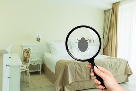 Biancheria da letto per il controllo delle cimici del fondo delle cimici dei parassiti