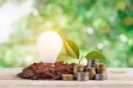 bulb with growing plant Standard-Bild - 124556062