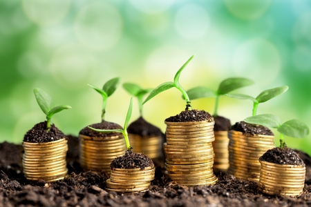 Coins in soil with young plants on background Imagens