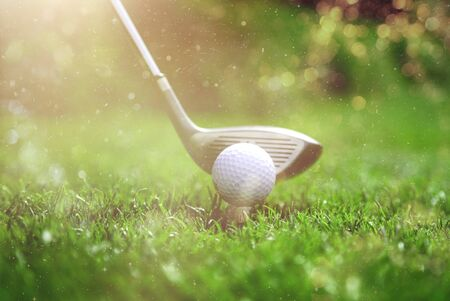 Golfer die golfbal op de green zet