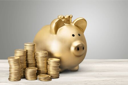 Golden piggy bank and coin