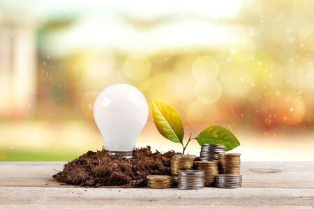 bulb with growing plant Standard-Bild - 125141640