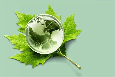 Environment concept, glass globe and green leaf Stock Photo
