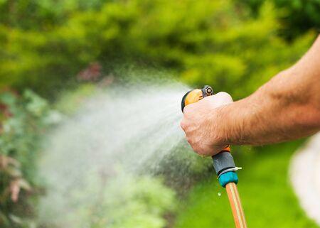 Watering green garden with outdoor hose