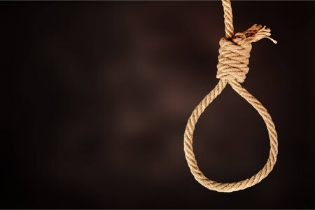 Creative social concept photo of rope noose with hangmans knot hanging in front of  black background.          - Image