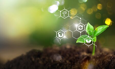 Plants background with biochemistry structure. Copy space using as background or input any text as you wish. Natural and science concept.