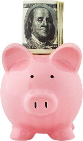 Money on a piggy bank