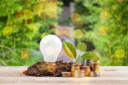bulb with growing plant Standard-Bild - 128244598