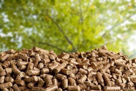 Granulés de biomasse- gros plan sur fond