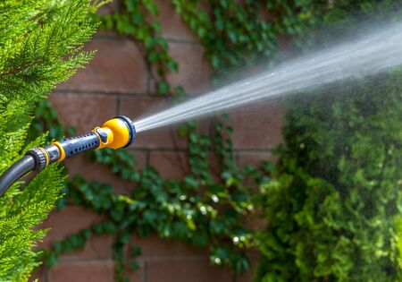 Hose with Spray Nozzle