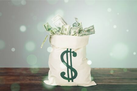 Money in the bag isolated on background