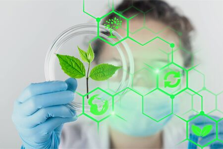 Scientist holds sprout lab laboratory plant agriculture agronomy analyzing
