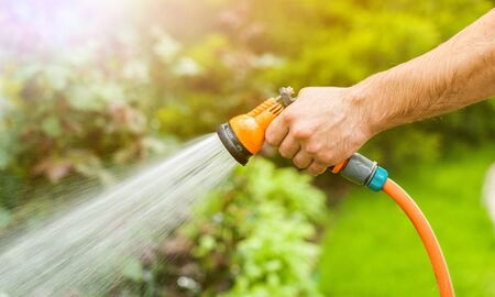 Watering green garden with outdoor hose Zdjęcie Seryjne