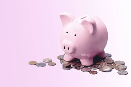 Pink Pig with coins on a white background