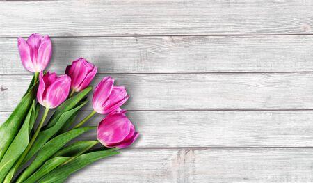 Lavender flowers on light  wooden background Stok Fotoğraf
