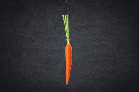 Carrot hanging on string on black background Imagens