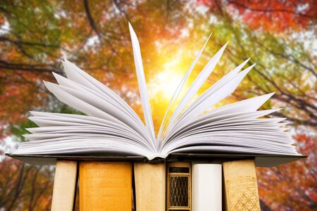 Book of poetry outdoors with flower on it Imagens