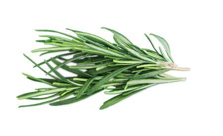 Herbs Collection Zdjęcie Seryjne