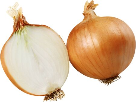 Vidalia onion cut in half Zdjęcie Seryjne