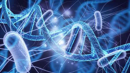 Cell human cell animal cell science dna biology stem cell