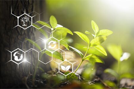 Plants background with biochemistry structure.          - Image Stok Fotoğraf - 133652546