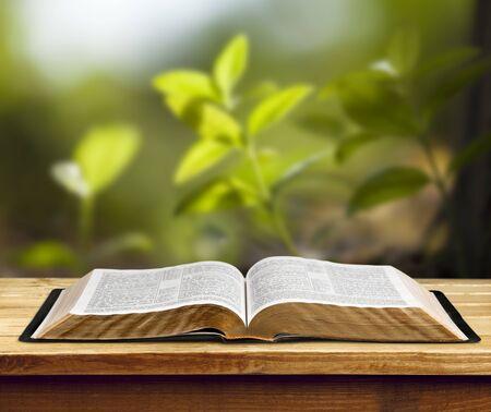 Offenes Buch auf altem Holztisch.