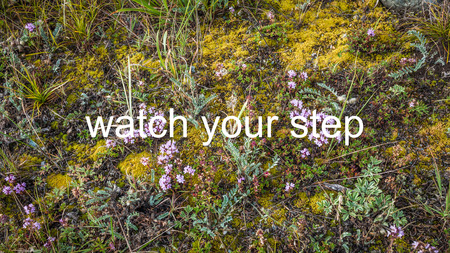 watch your step photo