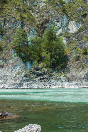 chemal: The water in the rivers of different colors. Katun - turquoise, Chemal - transparent.