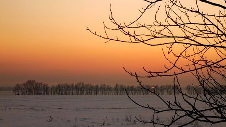 winter evening: winter evening