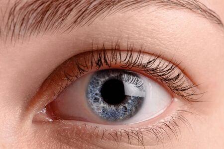 Close up blue eye Stock Photo