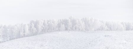 Fairy Siberian forest hill in the frost. Winter landscape. Snow covered trees.