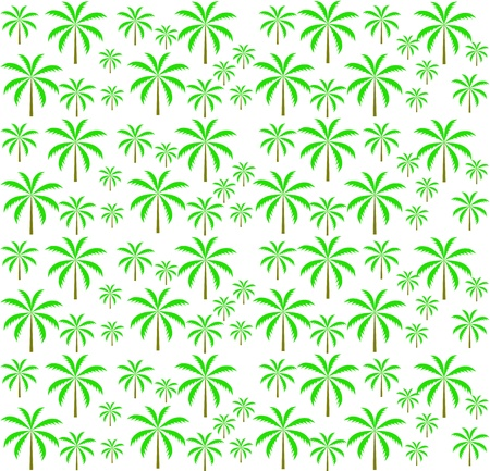 Palm trees seamless pattern  Vector illustration  EPS 10  Stock Vector - 16731963
