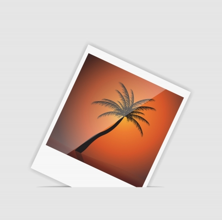 Vector Instant photo with palm tree vector illustration Stock Vector - 16456643